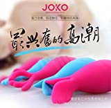 JOKO Female Multi Frequency Jumping Butterfly - Return to Masturbation Vibrator - Stimulate The Clitoris Remote Control Jump Eggs Couples Fun Products