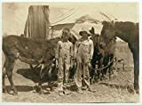 1917 Photo A pair of truants, tending their father's mules. Photo taken during school hours, near Oklahoma City. Boys are 9 and 11 yrs. old. Location: Oklahoma City, Oklahoma. / L.W. Hine. Location: