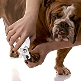 AMIR Pets Nail Clippers,Scissors a Free Nail