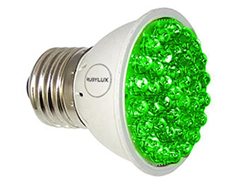 Best Value · RubyLux Green Bulb Size Small Product Image