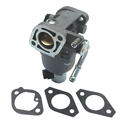 KIPA Carburetor for Briggs & Stratton 699807 401577 4025A7-0224 4035A7-0409 Cub Cadet MTD 699807 with mounting Gaskets