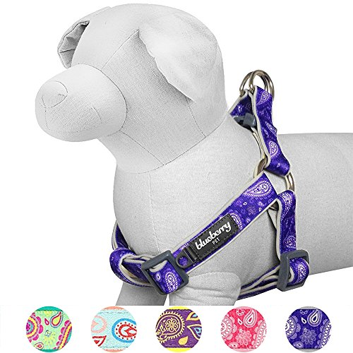 Blueberry Pet 5 Colors Soft & Comfy Step-in Paisley Flower Print Dog Harness, Chest Girth 15.5