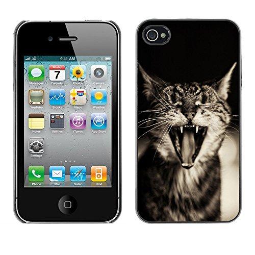 Omega Case PC Polycarbonate Cas Coque Drapeau - Apple iPhone 4 / 4S ( Cute Funny Sleepy Cat )