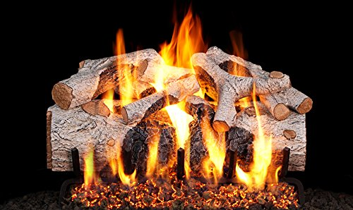 (Peterson Real Fyre 24-inch Charred Mountain Birch Gas Log Set With Vented Natural Gas G45 Burner - Match Light)