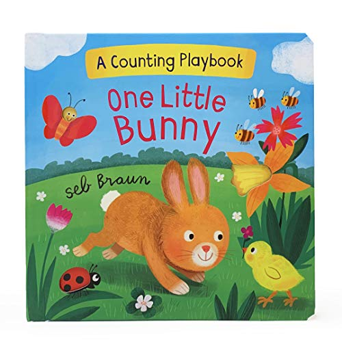 One Little Bunny: A Counting Playbook
