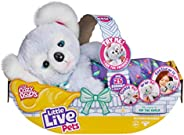 Little Live Pets Cozy Dozy