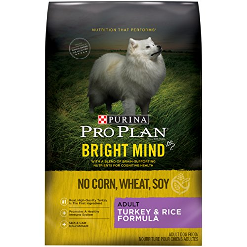 Formula Turkey (Purina Pro Plan BRIGHT MIND Adult Turkey & Rice Formula Adult Dry Food - (1) 24 lb. Bag)