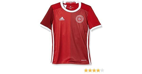 adidas Réplica de Camiseta de Dinamarca para niñ, Infantil, Dänemark Heimtrikot Replica, Power Red F05/Craft Red F12: Amazon.es: Deportes y aire libre