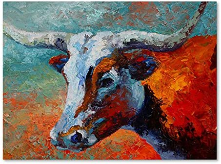 Young Longhorn