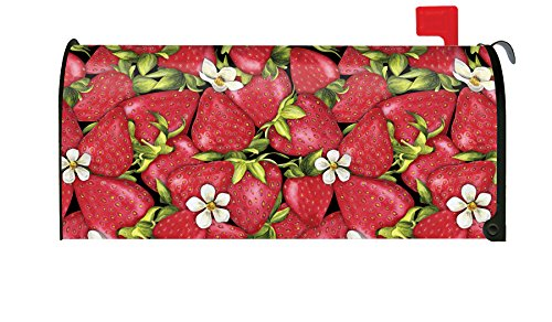 - Toland Home Garden Strawberry Collage Colorful Red Summer Fruit Magnetic Mailbox Cover