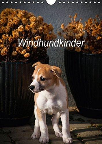 Windhundkinder (Wandkalender 2017 DIN A4 hoch): Whippetwelpen, die sie verzaubern werden! (Monatskalender, 14 Seiten) (CALVENDO Tiere)