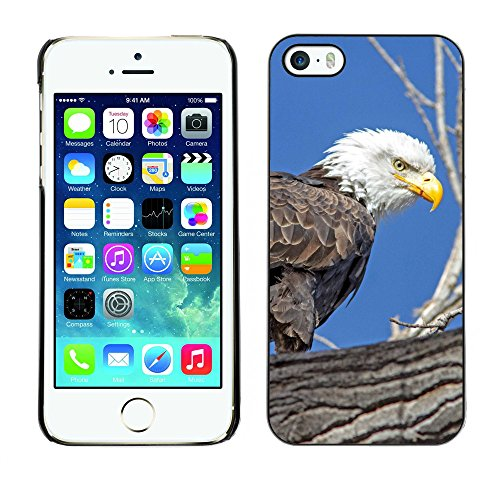 Premio Sottile Slim Cassa Custodia Case Cover Shell // F00026001 aigle de chasse // Apple iPhone 5 5S 5G