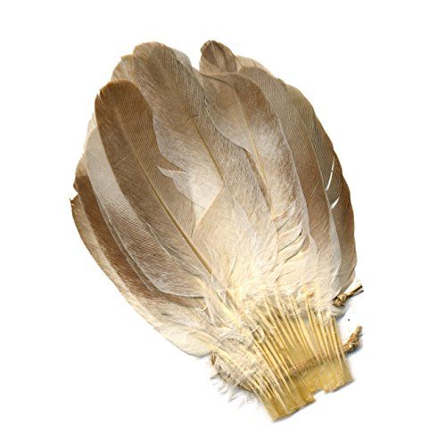 ZUCKER Pigeon Feather Cosse Fan Trim - Natural