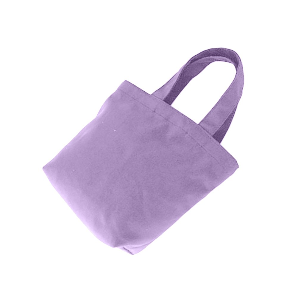 Azul Claro gzzebo Lona Bolsa de Almuerzo port/átil Bolsa de Almacenamiento de Bolsa de cosm/éticos de Color s/ólido Caja de Almuerzo de Las Mujeres