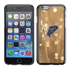 CASECO - Apple Iphone 6 Plus 5.5 - Frosty Butterfly - Delgado Negro Plástico caso cubierta Shell Armor Funda Case Cover - Mariposa Frosty