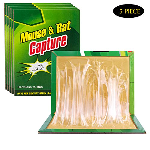 - SIYU Mouse Trap, Rat Trap, Mouse Traps for Mice Rat, Rat Catcher Board 5 Pack