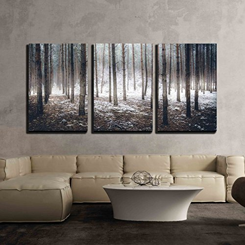 wall26 - 3 Piece Canvas Wall Art - Landscape of Spooky Winter Forest Covered by Mist - Modern Home Decor Stretched and Framed Ready to Hang - 24