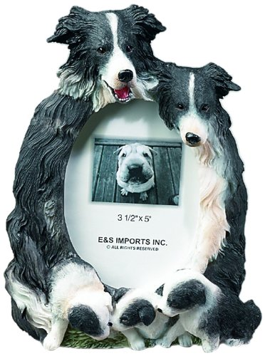 E&S Pets 35257-65 Large Dog Frames (Collie Pictures compare prices)