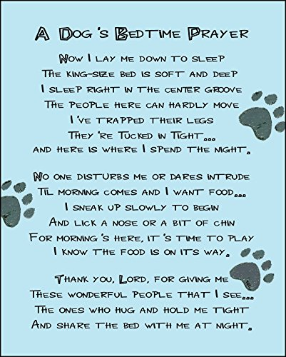 A Dog's Bedtime Prayer 14 x 11 inch Inspirational Decorative Sign Plaque (Dog Plaque Wall Puppy)
