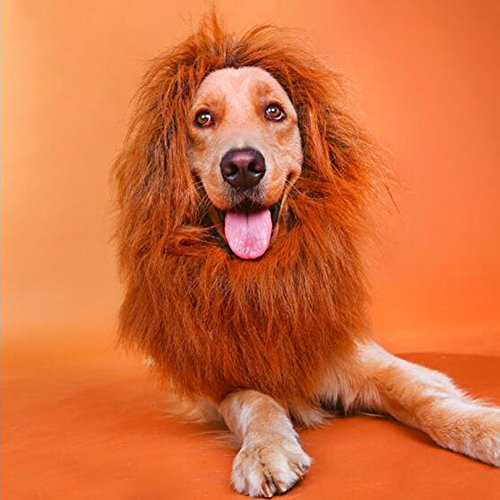 Yosoo Pet Cat Small Dog Lion Mane Wig Brown Toy-like Lion Mane Stuffed & Plush Toy Cat Lion Hat for Festival Party Halloween Fancy Dress up (Halloween Headpieces)