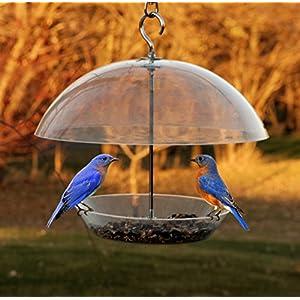 Woodlink NABBFDR Audubon Dome Top Seed and Bluebird Feeder