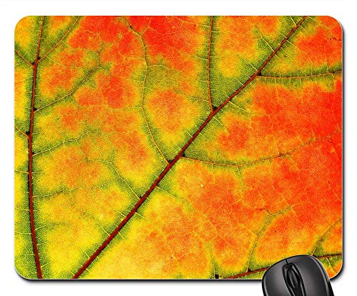 Mouse Pad - Sycamore Leaf Tree Nature Color Fall Maple ()