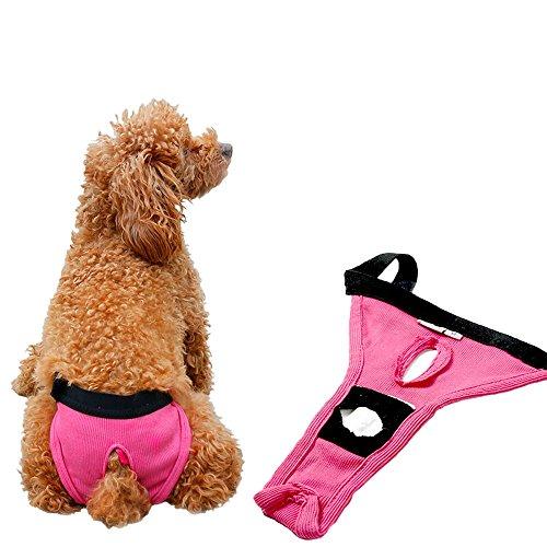 Mycandy Pack of 2 Classic Ribbing Puppy Dog Sanitary Phys...