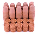 Pennington 2-inch Terra Cotta Pots and Saucers Case Bundle (80 Pots and 80 Saucers)