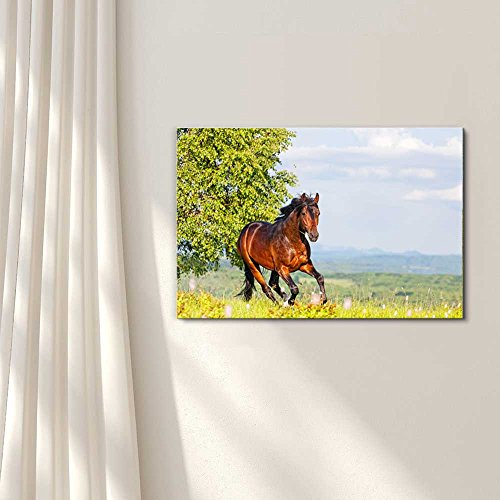 Bay Horse Skips on a Meadow Against Mountains Home Deoration Wall Decor ing