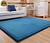 HIGOGOGO Thicken Coral Velvet Carpet Thickness:3CM, 75 by 75 inch Ultra Soft Children Crawling Mat, Super Large Living Room Bedroom Mat Area Rug, Reversible Children Play Mat/Yoga Mat/Exercise Mat