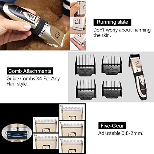 FOCUSPET Pet Grooming Clippers, Low Noise Professional Rechargeable Cordless Dog Grooming Clippers Kit Electric Hair Trimming Clippers Set Dogs Cats Other Animals (Gold&Black) by FOCUSPET (Image #3)