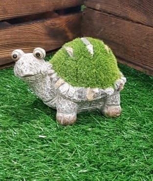 Con adorno de jardín Terry la tortuga pequeño jardín decoración al aire libre Accesorios Nuevo: Amazon.es: Jardín