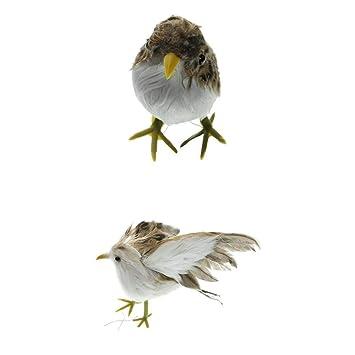 B Blesiya 2pcs Mini Ornamentos Bonsai Estatua de Pájaro ...