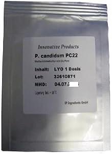 CHEESE CULTURE - PENICILLIUM CANDIDUM PC22 (FAST GROWTH)