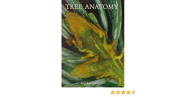Tree Anatomy: Alex L. Shigo: 9780943563145: Amazon.com: Books