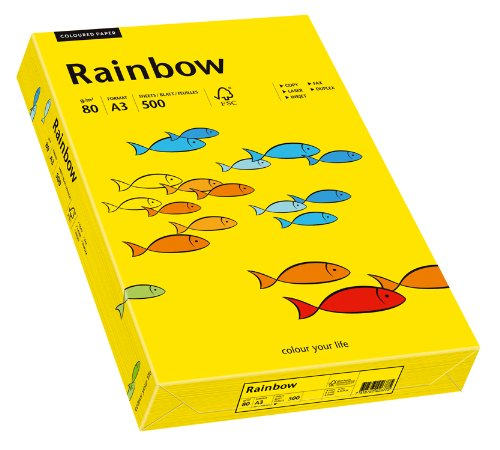 A4 250 Blatt hellrosa Papyrus 88042524 Druckerpapier Rainbow 120 g//m/²