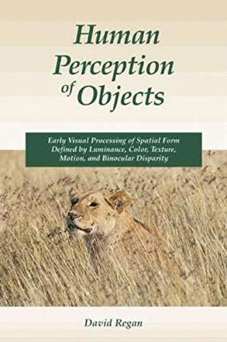 Human Perception of Objects