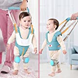 Baby Walking Harness Assistance, Adjustable