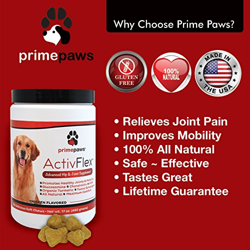 Best Natural Supplement For Arthritis In Dogs