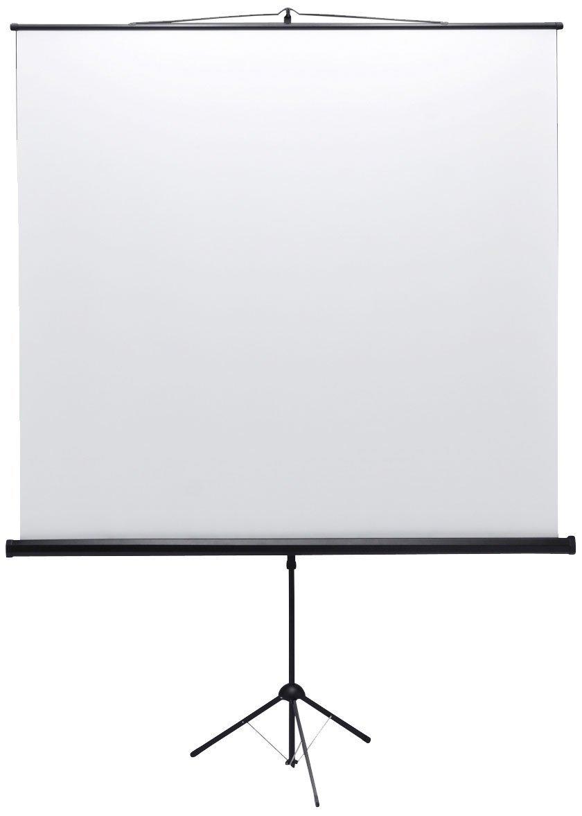 SANWA SUPPLY PRS-S80 プロジェクタースクリーン(三脚式) B0042UINJ4  80インチ
