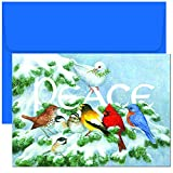 Masterpiece Studios Holiday Collection 18 Cards / 18 Envelopes, Birds on Branch