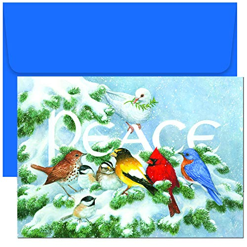 Masterpiece Studios Holiday Collection 18 Cards / 18 Envelopes, Birds on Branch (Christmas With Cards Birds)