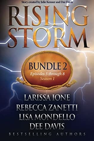 book cover of Rising Storm: Bundle 2