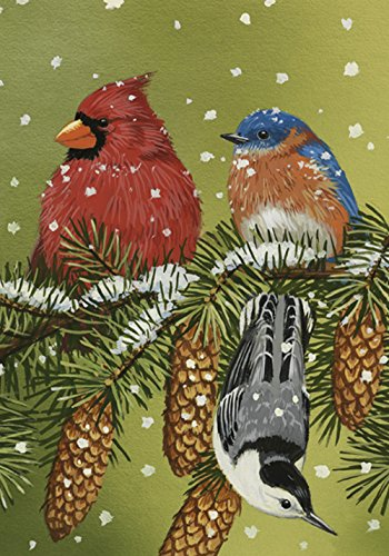Toland Home Garden Snowy Friends 12.5 x 18 Inch Decorative Winter Snow Bird Cardinal Garden Flag - 110560