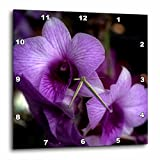 3dRose WhiteOaks Photography and Artwork - Orchid Flowers - Haunted Halo Glow is a photo of beautiful purple orchids - 10x10 Wall Clock (dpp_252517_1)