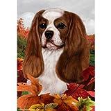 Cheap Best of Breed Fall Leaves Full Size Flag Blenheim Cavalier King Charles Spaniel