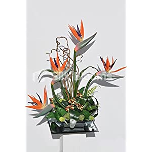 Refreshing Birds of Paradise Berries Thistle Palm Leaves Display 35