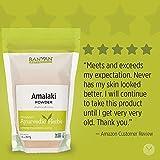 Banyan Botanicals Amalaki Powder – Organic Amla