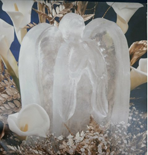 (Reusable Angel Ice Sculpture Mold with Instructions, Tips and Ideas)