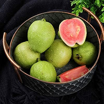 TelDen Garden Seeds - 30Pcs New Nice Adorable Flower Fragrant Seeds Fragrant Blooms Fig Seeds Flowers Indoor Plants House Decorating : Garden & Outdoor